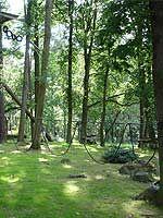 Adrenalin Park - Vila Botanika