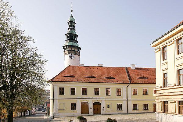 Hrad Domažlice (Chodský hrad)