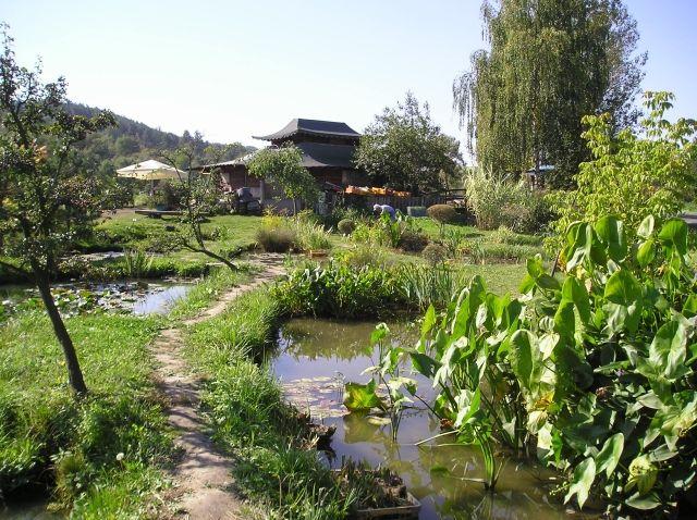 Vodní park s naučnou stezkou Čabárna