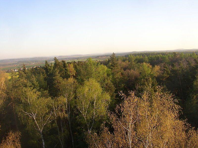 Rozhledna Kožova hora u Kladna - výhled - autor Miaw Miaw, dílo volné