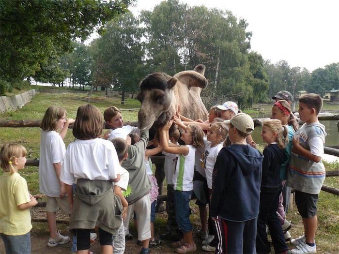 Zoopark Chomutov - Letní příměstský tábor