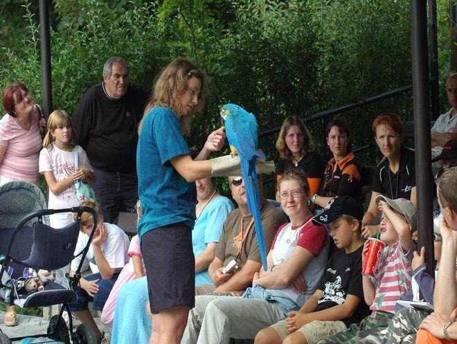 Zoo Dvůr Králové - Zoolektor - programy pro školní exkurze
