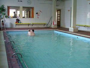 Plavecký bazén - SK Radbuza Plzeň