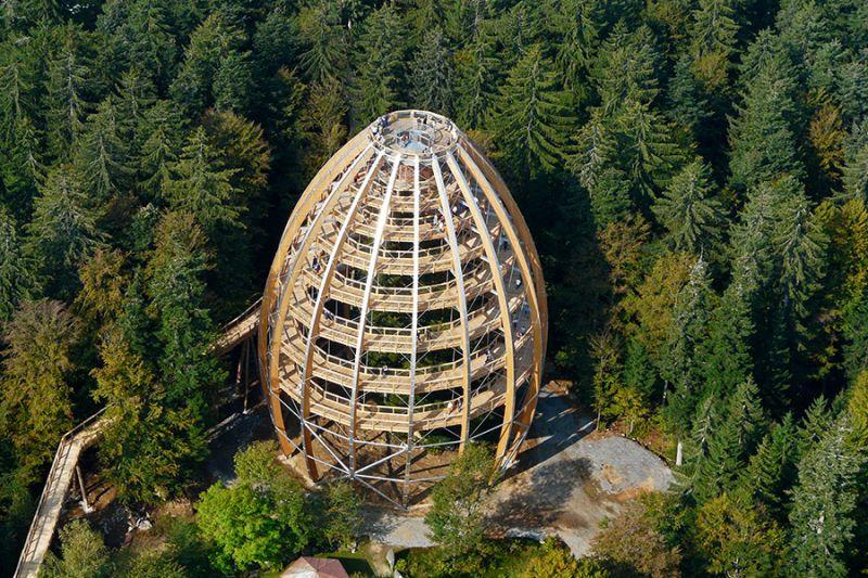 Stezka v korunách stromů - Německo (Baumwipfelpfad)