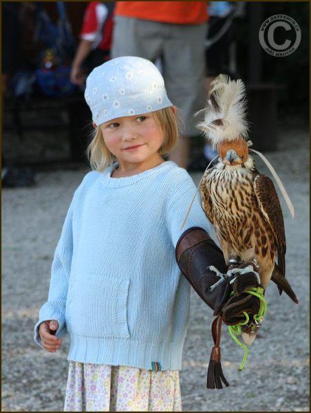 Zayferus - ukázky dravců a sokolnictví (zámek Lednice)