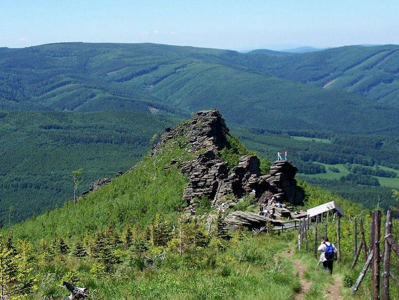 Vrchol Obří skály (1081 m)