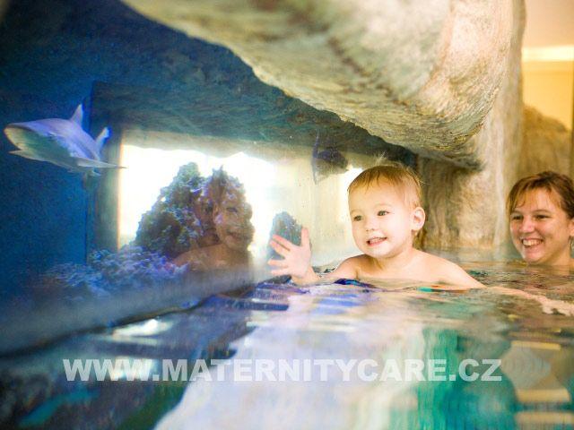 Maternity Care - Plavání rodičů s dětmi v korálovém bazénu Aquapalace Praha