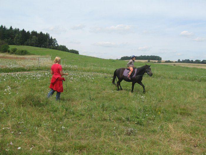 Stáj Artuš, Benice - Výuka jízdy na koních, vyjížďky