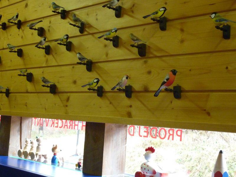 Centrum dřevařství Modrava - Výtvarné kurzy (Malování ptáčků)