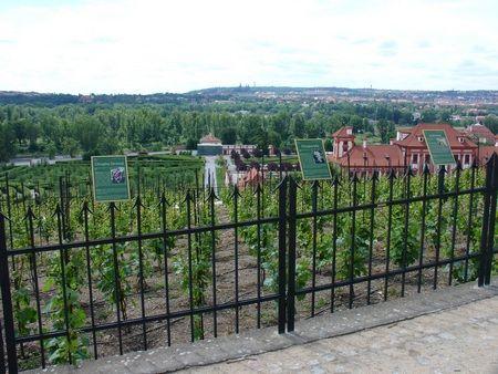 Botanická zahrada Praha - Program pro školní skupiny
