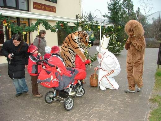 Zoo Dvůr Králové - Mikuláš v Zoo se zvířecími pomocníky