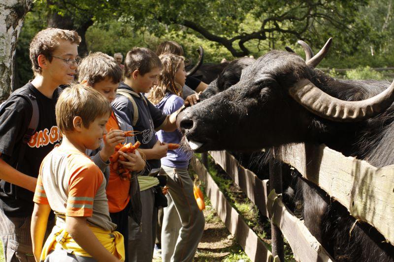 Zoopark Chomutov - JARNÍ EKOTÁBOR