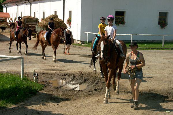 Hřebčín Favory - Letní dětský tábor zaměřený na výcvik jezdectví