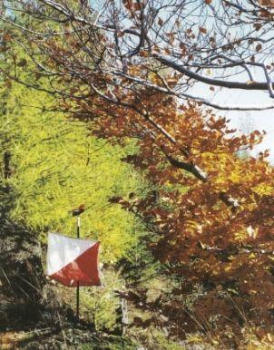 """Otevření """"Centra orientačních sportů"""" v Černém Údolí"""