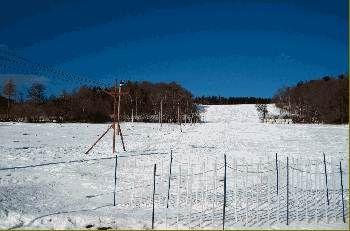 Ski klub Rohy - Brloh