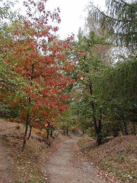 Naučná stezka Botanické zahrady Troja