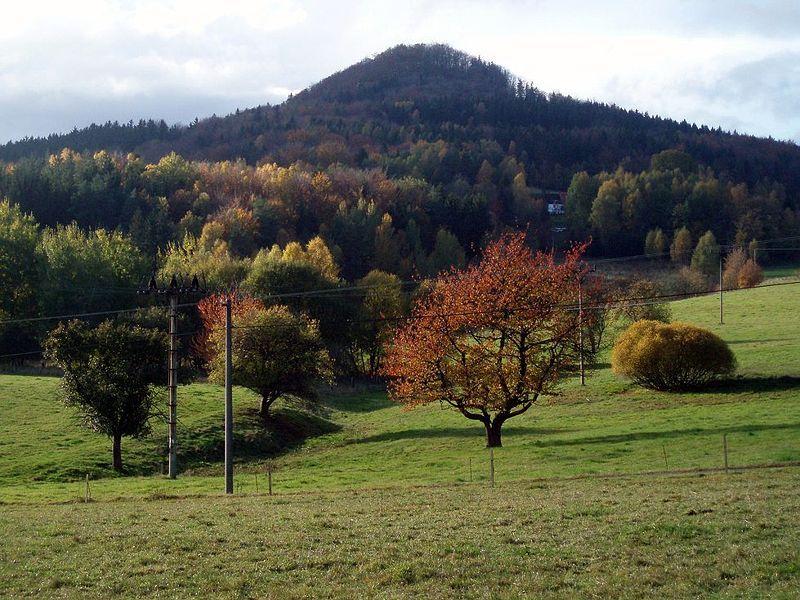 Lesnická naučná stezka Sokol