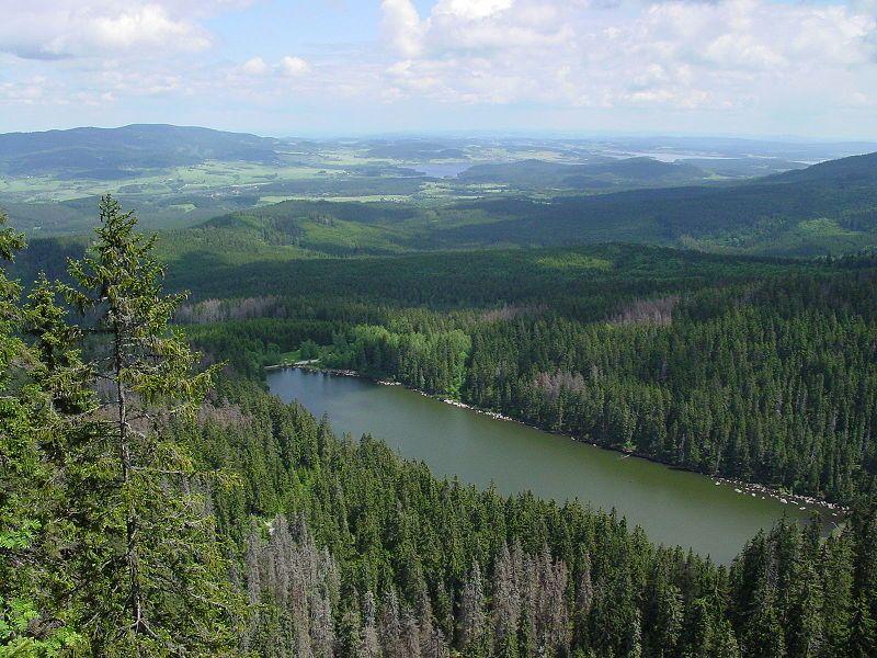 Zážitková stezka Duch pralesa - Plešné jezero