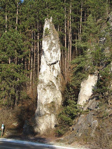 Pulovsianska skalna ihla