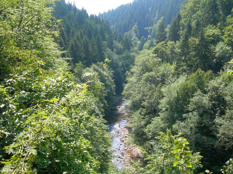 Riegrova stezka – naučná stezka údolím řeky Jizery