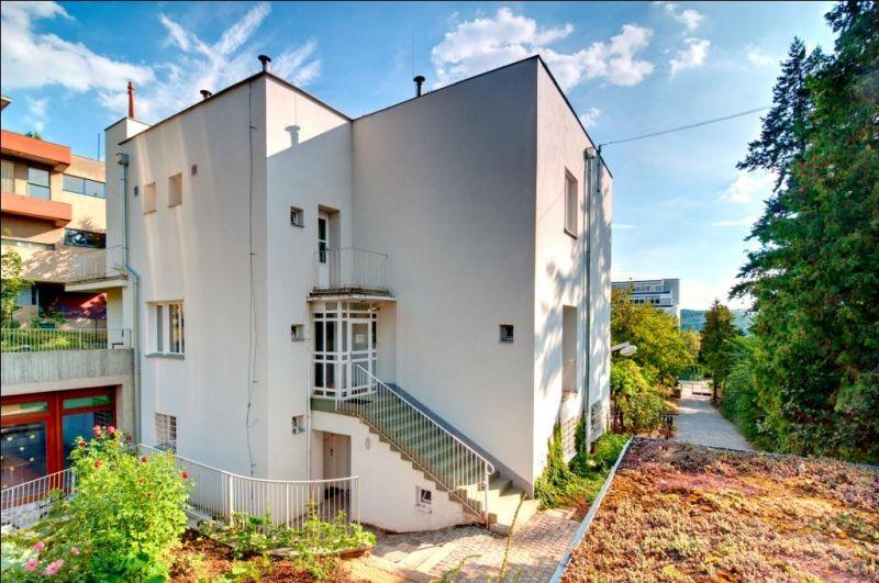 Lipka Brno - pracoviště Lipová
