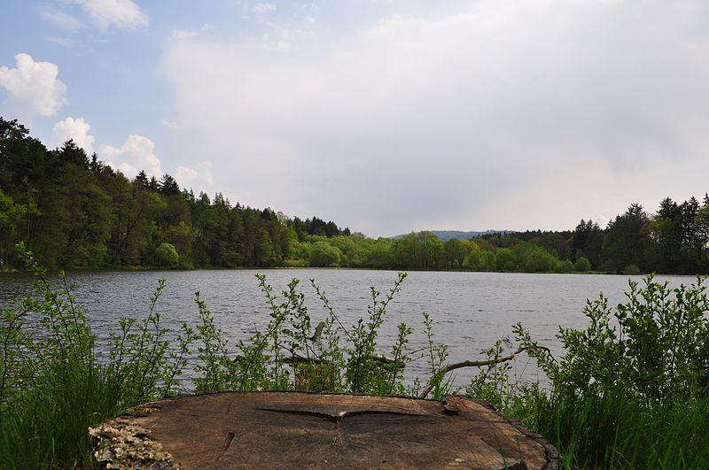 Naučná stezka Hvížďalka - Rybník Hvížďalka