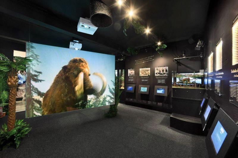 Muzeum Karla Zemana - Haló pane mamut, jsme tady dobře v pravěku