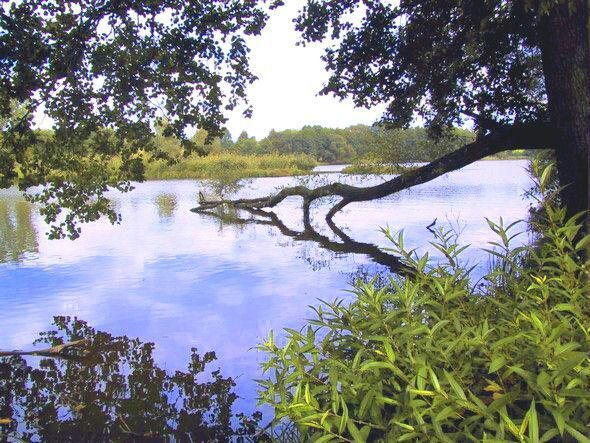 Naučná stezka Lanškrounské rybníky