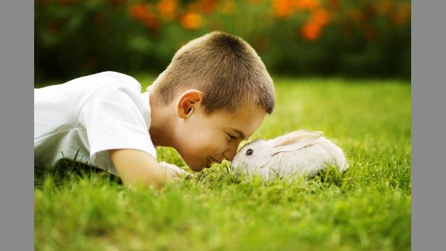 Chlapeček s králíkem.jpg